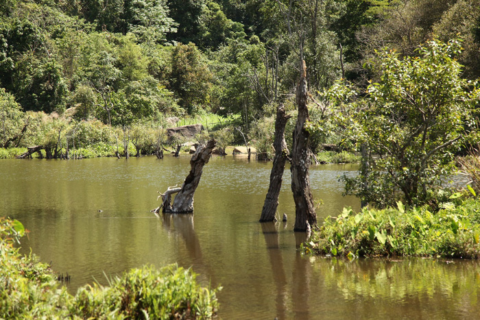 Cảnh sắc xung quanh hồ Noong U tĩnh lặng, nên thơ