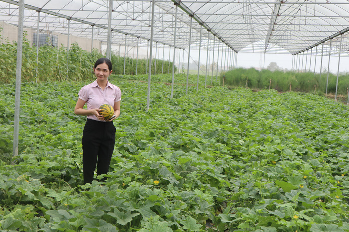 Khởi nghiệp từ nông nghiệp công nghệ cao - Ảnh 1.