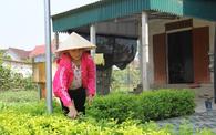Phụ nữ vùng giáo Bình Yên chung sức xây dựng nông thôn mới kiểu mẫu