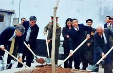 Chuyện chưa kể về cây bàng trong sân trại nữ Nhà tù Hỏa Lò