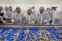 """Khánh thành nhà máy chế biến hoa quả lớn nhất Tây Bắc, chấm dứt nỗi đau """"được mùa mất giá"""" của nông dân"""