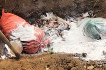 Mang 2 tạ nội tạng động vật đang phân hủy đi tiêu thụ