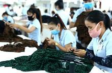 Xuất khẩu năm 2020 của Việt Nam tăng 6,5%