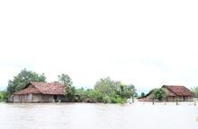 Mưa lũ gây thiệt hại nặng nề ở Đắk Lắk và Đắk Nông