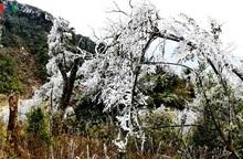 Xuất hiện băng tuyết ở Mù Cang Chải