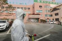 Các doanh nhân Việt ở Hàn Quốc vẫn an toàn và lên kế hoạch ứng phó với Covid-19