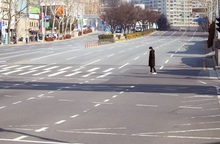 """Thành phố Daegu như """"đứng hình"""" trong tâm điểm dịch SARS-CoV-2"""