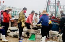 Ngư dân mang hàng tạ cá biển ủng hộ các khu cách ly tập trung