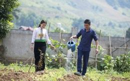 Bình đẳng giới thực chất trong xây dựng nông thôn mới vẫn còn khoảng cách xa với các tiêu chí đạt được