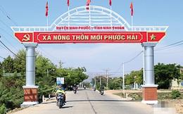 Ninh Thuận: Huyện Ninh Phước đạt chuẩn nông thôn mới