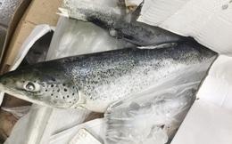 Đồng Nai: Phát hiện 2,5 tấn cá hồi nhập khẩu hết hạn sử dụng