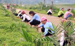 Phụ nữ Lào Cai đẩy mạnh tham gia xây dựng Nông thôn mới
