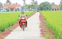 Phụ nữ Long An chung sức xây dựng nông thôn mới