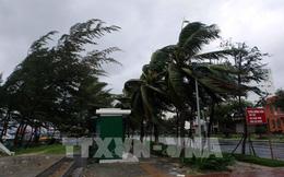 Bình Định: Hơn 80% khách hàng bị mất điện vì bão số 9 sẽ được khôi phục vào 17 giờ ngày 28/10