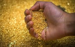 Giằng co trong phiên giao dịch, giá vàng lại giảm nhẹ
