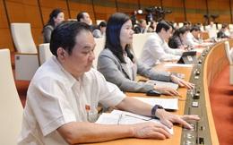 Quốc hội cho phép TP.HCM thực hiện mô hình chính quyền đô thị không qua thí điểm