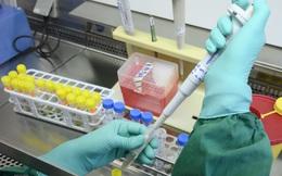 12 ca nhiễm mới, cả nước có 1.300 ca mắc Covid-19