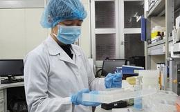 Phú Yên ghi nhận 4 trường hợp nhập cảnh nhiễm COVID-19