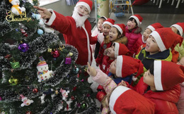 Đồ trang trí Noel đồng loạt giảm giá mạnh trước thềm Giáng sinh