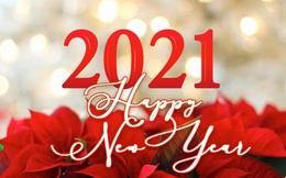 8 cách đón năm mới 2021 ngay khi ở nhà giữa đại dịch Covid-19