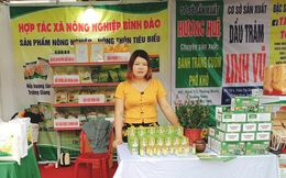 Quảng Nam: Nỗ lực khuyến khích phụ nữ khởi nghiệp