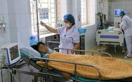 Dễ tử vong vì ngộ độc nấm nếu người dân tiếp tục những thói quen này