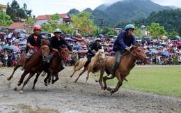 Lần đầu tiên có nài ngựa nữ tranh tài trong giải đua ngựa Bắc Hà