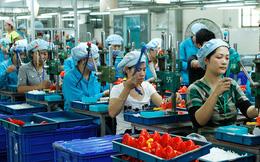 Bất cập về tiêu chí hỗ trợ miễn giảm thuế thu nhập cho doanh nghiệp nhỏ
