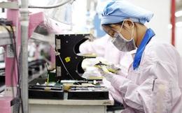 """Cơ hội với lao động nữ Việt Nam trước """"làn sóng"""" tuyển dụng của Apple"""