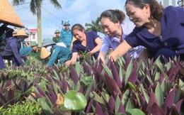 Nâng cao nhận thức cho cán bộ, hội viên phụ nữ về bảo vệ môi trường