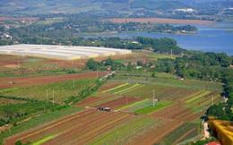 Tập đoàn TH chuẩn bị xây dựng Khu nông nghiệp công nghệ cao tại Hà Nội