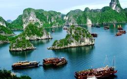 Giảm 50% vé cho du khách tham quan, nghỉ đêm trên vịnh Hạ Long đến hết tháng 9