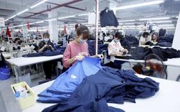 1/8: Hiệp định EVFTA chính thức có hiệu lực mở ra cơ hội vàng cho doanh nghiệp Việt
