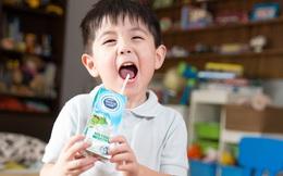 """Mùa này các mẹ cần chú ý sức khỏe dinh dưỡng, cùng """"vén màn"""" bí mật quy trình sản xuất của loại sữa tươi an toàn hơn chuẩn 11 lần!"""