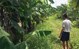 Cục Trẻ em đề nghị ưu tiên điều tra vụ bé gái 12 tuổi bị chặn đường hiếp dâm ở Gia Lâm