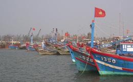 Bão số 5 đổ bộ vào khu vực từ Quảng Bình đến Quảng Nam, dự báo mưa rất to