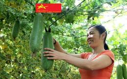 Hà Tĩnh: Phát động phong trào khởi nghiệp năm 2020 - 2021