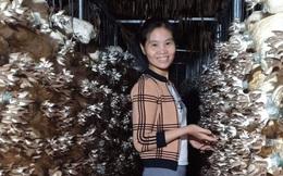 Gây dựng trang trại nấm hữu cơ từ vẻn vẹn 40 triệu đồng vay tín chấp