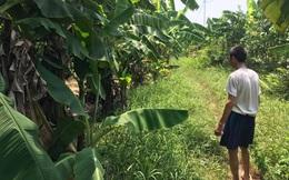 Bắt được nghi phạm chặn đường, ép bé gái 12 tuổi vào vườn chuối để hiếp dâm