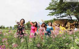 Nghỉ Tết dương lịch 2021: Người Sài Gòn đua nhau check in cánh đồng hoa Hóc Môn