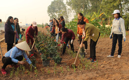 Phú Thọ: Xây dựng vườn hoa chào mừng Đại hội phụ nữ các cấp