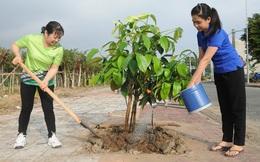 Phấn đấu hết năm 2025 cả nước sẽ trồng được ít nhất 1 tỷ cây xanh