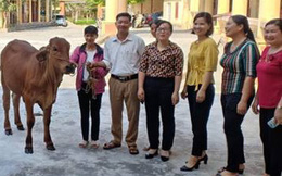 Bắc Giang: Tập huấn nghiệp vụ công tác Hội năm 2021 cho cán bộ cơ sở