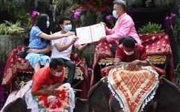 52 đôi ở Thái Lan đám cưới tập thể trên lưng voi