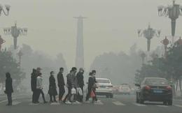 Ô nhiễm không khí có thể làm tăng 20% nguy cơ vô sinh