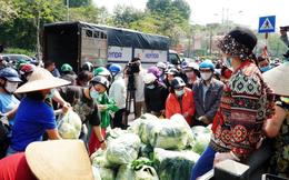 """Phó Chủ tịch Hà Nội: """"Giải cứu"""" nông sản Hải Dương phải đảm bảo phòng chống Covid-19"""