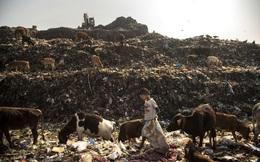 Nhói lòng trước cuộc sống thường ngày của cậu bé nhặt rác ở Ấn Độ