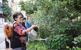 """Hà Nội phấn đấu có 1.000 """"đoạn đường, tuyến phố nở hoa"""""""