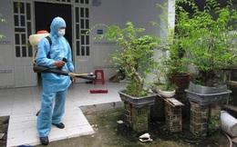 Cách diệt muỗi, bọ gậy phòng sốt xuất huyết hiệu quả