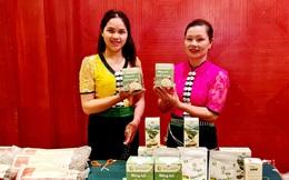 Hơn 8.000 phụ nữ vùng cao Lào Cai và Sơn La được tăng thu nhập